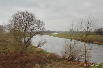 Rzeka Bzura przy DK575 (miejscowość Kamion)