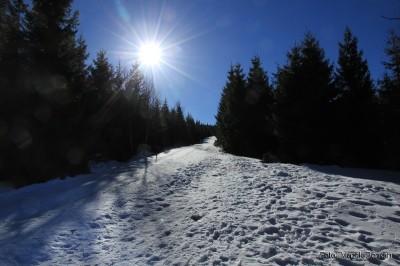 Czerwony szlak od Wodospadów Kamieńczyka na Halę Szrenicką - zaczyna się śnieg i lód
