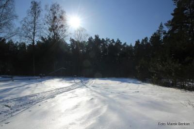 Pole biwakowe na skrzyżowaniu zielonego i żółtego szlaku koło leśniczówki Krzywa Góra