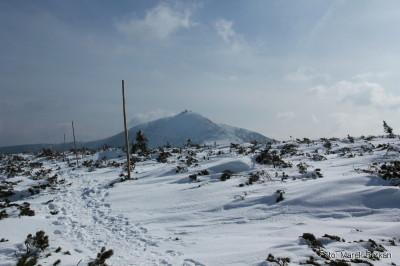 Droga zimowa od schroniska Strzecha Akademicka w kierunku Przełęczy Pod Śnieżką - widok na Śnieżkę