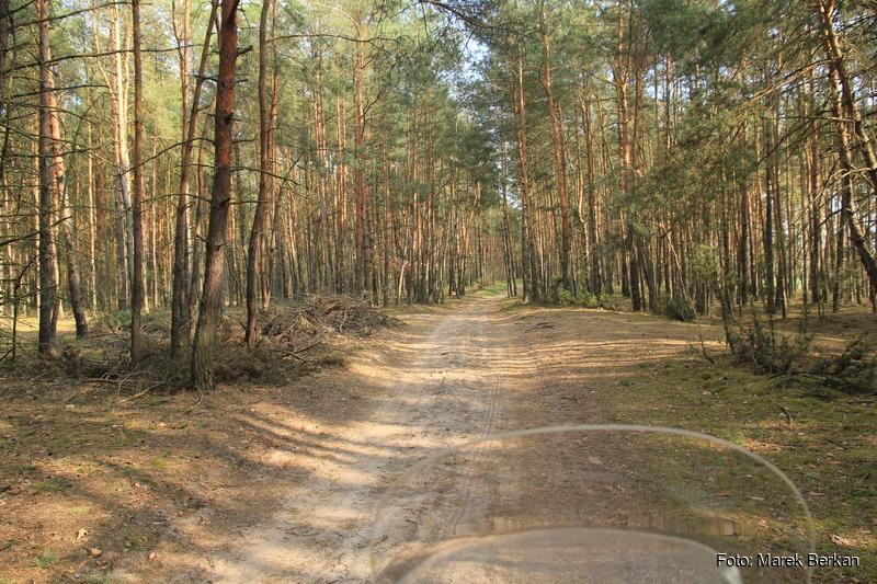 Okolice Kępy Polskiej