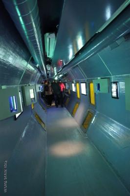 Muzeum morskie - korytarz pod wodą