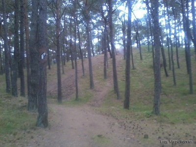 Ścieżka z Jastrzębiej Góry do Karwi