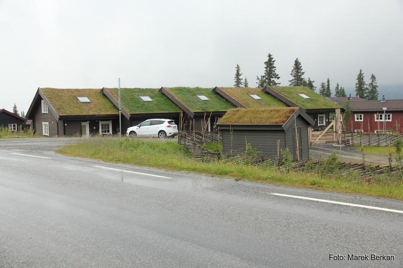 Domy z trawą na dachach
