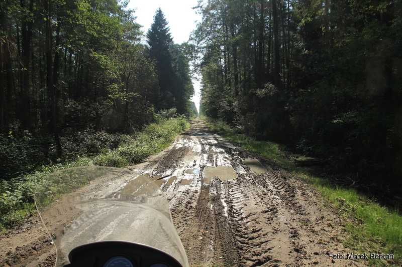 Trakt w kierunku miejscowości Biłgoraj