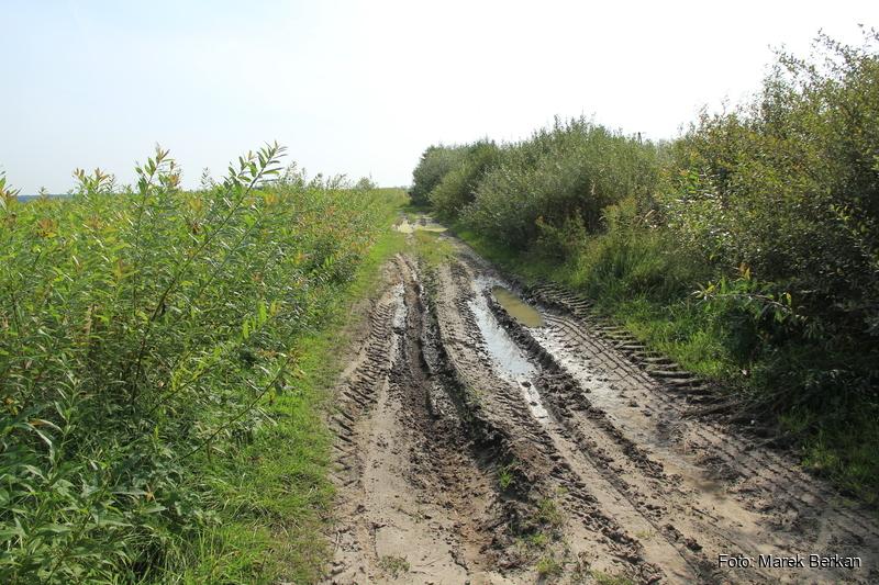 Początek trasy terenowej w okolicach miejscowości Basznia Dolna