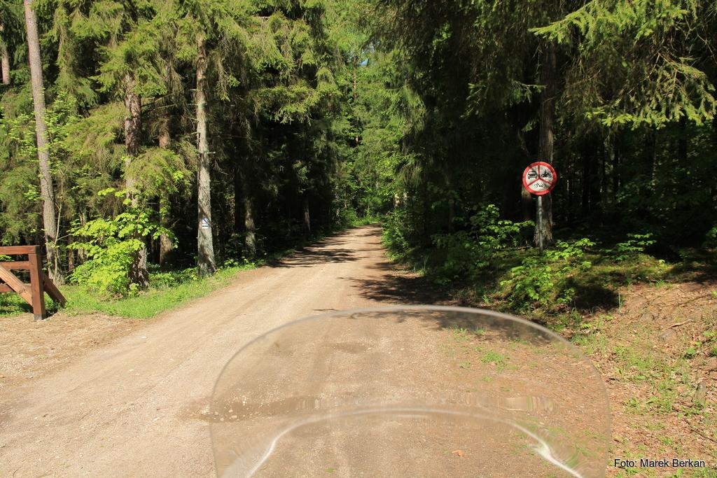 Wyraźne zakazy wjazdu do lasu zmusiły nad do odwrotu