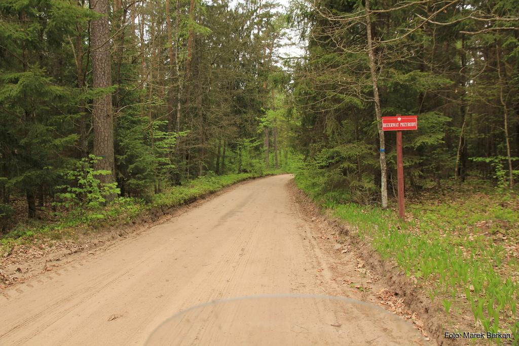 Rezerwat Krzemienne Góry koło Supraśla