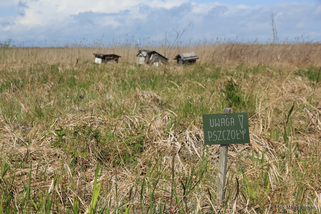 Kopytkowo - gospodarstwo agroturystyczne Dworek na Końcu Świata
