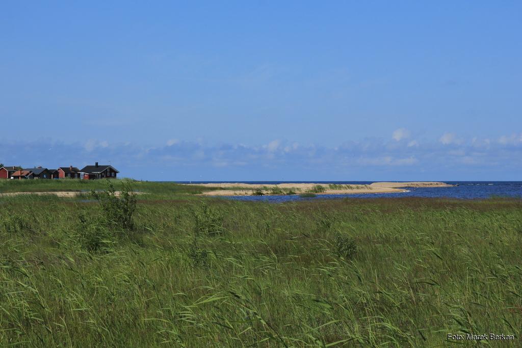 Bałtyk - zatoka botnicka