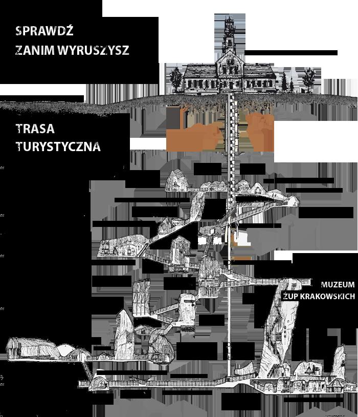 Schemat zwiedzania ze strony http://www.kopalnia.pl/zwiedzanie/trasa-turystyczna/co-na-szlaku