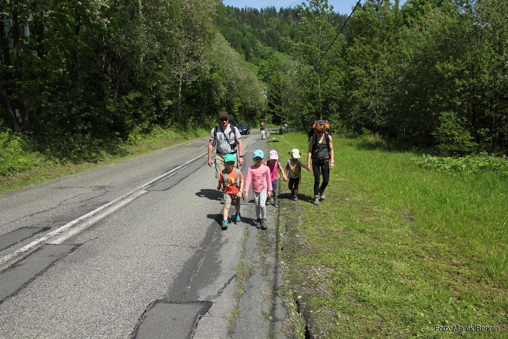 Fragment szlaku żółtego na przełęcz Salmopolską