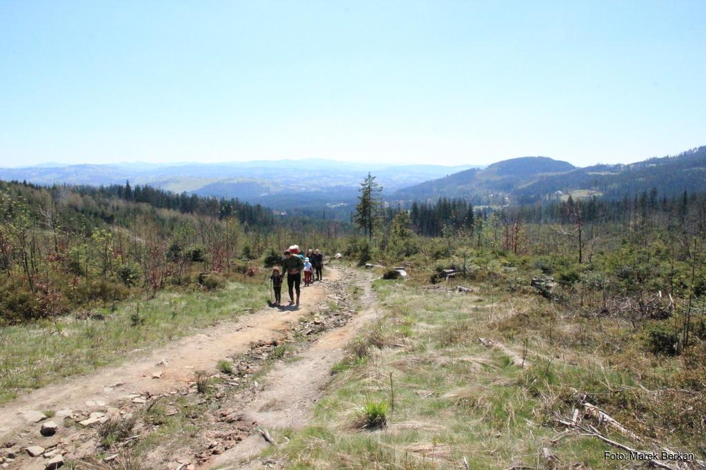 Czerwony szlak od schroniska Stożek do przełęczy Kubalonka