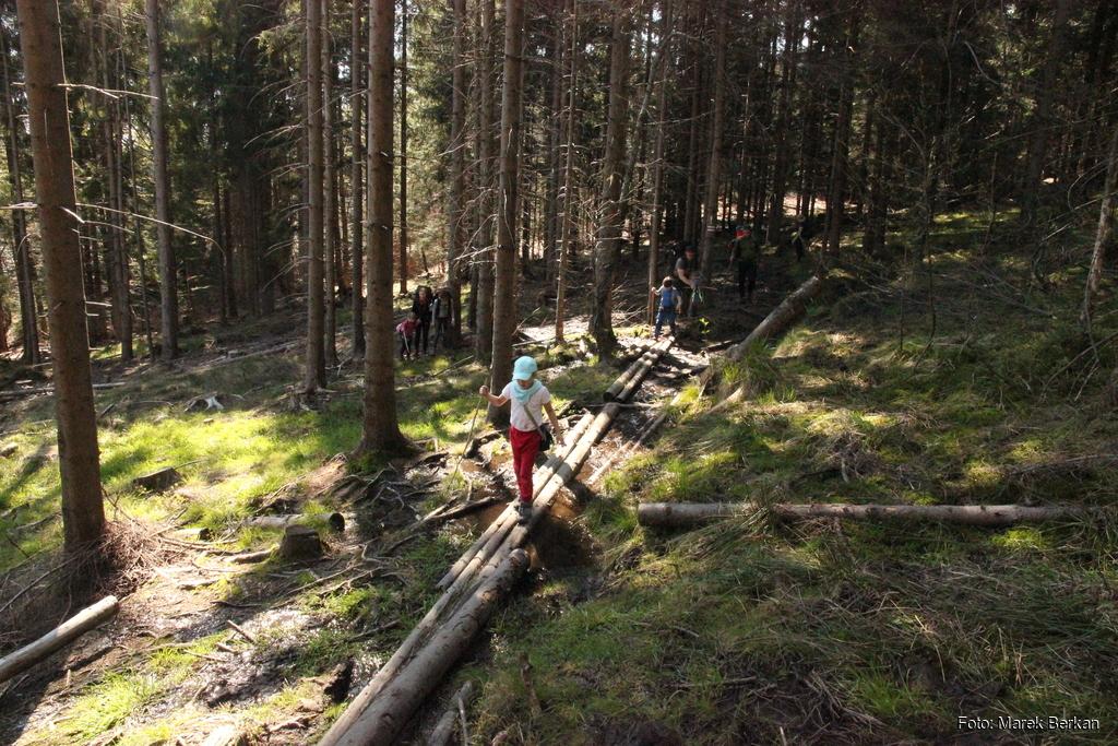 Czerwony szlak od przełęczy Kubalonka na wschód