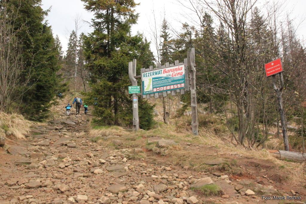 Szlak czerwony na Baranią Górę