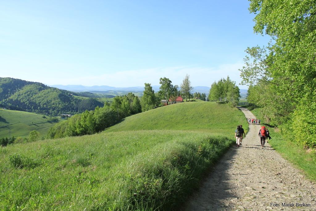 Czerwony szlak przy wsi Podłubek